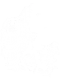 denmark-map-ciemtech.png